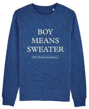 West Flemish for Behinners - Boy Means Sweater (Unisex)